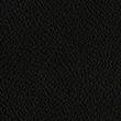 Ralph Lauren 黑色